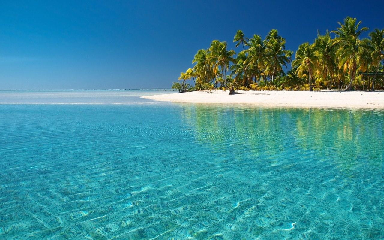 Pourquoi réserver une location de voiture à la Guadeloupe pas cher?